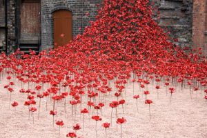 8 August: Poppy sculpture treat for boaters and walkers on Trent & Mersey Canal near Stoke